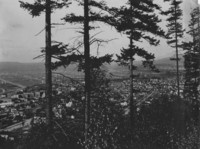 1906 Bellingham from Sehome Hill