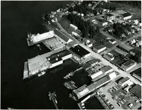 Aerial view of Pacific American Fisheries cannery facility at Petersburg, Alaska
