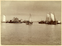 Sailboats, small steam vessels, and a canoe on the calm waters of a bay