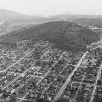 1971 Aerial View