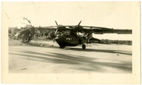 Double propeller military plane on dirt airstrip, with palm tree next to wing
