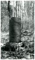 Grave marker of Ole Larson in overgrown cemetery