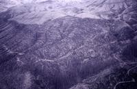 Blown-down timber on eastern flank of mountain.