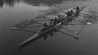1975 Men's Rowing