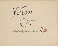 Yellow Cat