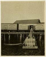 Unloading seed oysters for Drayton Harbor Oyster Company, Blaine, May 1907