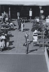 1981 Additon Plaza