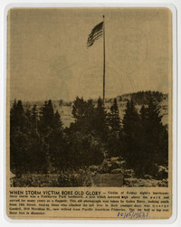 """Laminated newspaper clipping of photograph and caption showing tree/flag pole towering over other trees, waving American flag with caption """"When Storm Victim Bore Old Glory"""""""