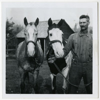 Charles Bourn stands next to two horses, holding their reins