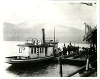 Tugboat tied to barge with several horses on it, next to shore, with hills in distance beyond water
