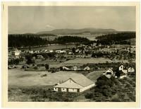Birdseye view of small waterside town of Friday Harbor, San Juan Island, Washington