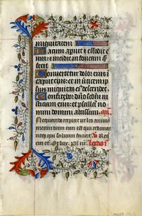 Item 317 (verso)