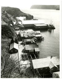 Looking down on the Pacific American Fisheries cannery at Squaw Harbor on Shumagin Island, Alaska.