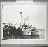 Two white fishing boats docked together - the