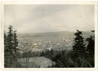 View through trees from top of Sehome Hill of downtown Bellingham, WA