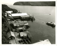 Aerial view of Pacific American Fisheries (PAF)'s cannery at Squaw Harbor, Shumagin Island, Alaska