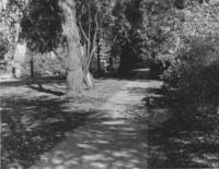 1961 Memory Walk