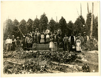 A large group of men, women, children pose in field of hopvines with harvested vines laying on ground in foreground, poles of live vines growing in background