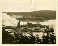 Lumber mill at shoreside with cargo ship at loading dock