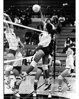 1991 Tamara Locke
