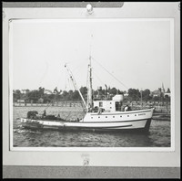 A purse seine fishing boat close to shore in Bellingham Bay with Eldridge Avenue houses in the background