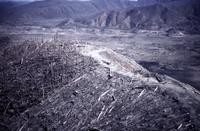 The same ridge (above) showing timber blown down by eruption.