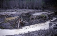 Washed-out bridge over Grizzly Creek.