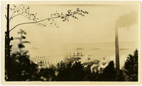 View through trees of four ships of the American fleet anchored off shore near Bloedel-Donovan Lumber Mill, Bellingham Bay