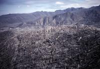 Ridge northwest of mountain, showing blast effects.