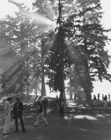 1982 Campus Morning