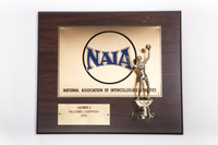 Volleyball (Women's) Plaque: NAIA District 1 Champions (front), 1990