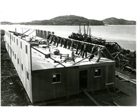 Raising a building as part of the Pacific American Fisheries facility at Alitak, Kodiak Island, Alaska