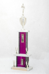 Soccer (Men's) Trophy: WSU Tournament Champion (front), 1974