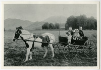 Three Larrabee children and a dog sit in a single-horse buggy in a field