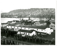 Rooftop view of Bellingham Canning Co. facilities in Fairhaven (Bellingham, Washington) on wharf next to Bellingham Bay