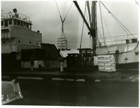 Pallets loaded with boxes of Wakefield's frozen crab sit on the dock as one pallet load is lowered into the hold of an awaiting ship