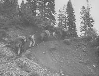 1947 College Trip: Hannegan Pass