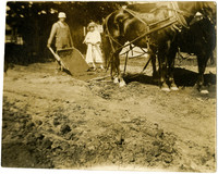 Man and woman with draft horses harnessed to barrow plough
