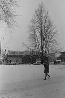 1971 Bookstore: Snowstorm