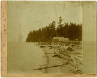 Beach covered with logs and driftwood, with barns and corral in background
