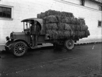 Man in plaid jacket, hat and gauntlet gloves standing on running-board of hay delivery truck.