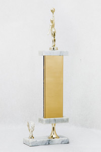 Basketball (Women's) Trophy: N-S Area Tournament 1st place (back), 1977