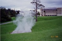 1996 Steam Sculpture