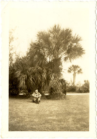 Man sits on lawn with palm trees behind him