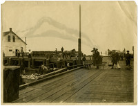 Workers unload salmon from barge at dock