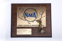 Golf (Men's) Plaque: NAIA District 1 Champions, 1985