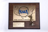 Golf (Men's) Plaque: NAIA District 1 Champions, 1985