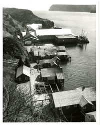 Aerial view of the Pacific American Fisheries cannery at Squaw Harbor, Shumagin Island, Barelof Bay, Alaska