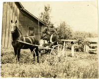 W.L. Gaston seated in small horse-drawn buggy at Clearbrook