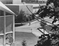 1975 View toward Art Building